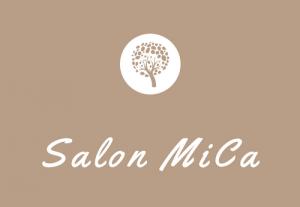 Book Salon MiCa